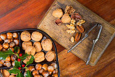 Edible nuts and nutcrackers on table at christmas, England, December  -  Gary K Smith/ FLPA