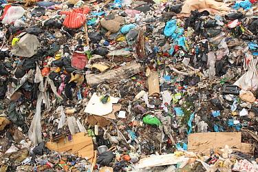 Household waste on landfill tip, Dorset, England, February  -  Steve Trewhella/ FLPA