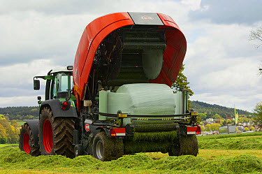 Kuhn all in one baler and wrapper, wrapping round silage bale in plastic, Cumbria, England, May  -  Wayne Hutchinson/ FLPA