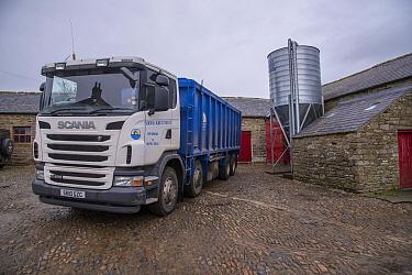 Scania lorry delivering feed to farm, Northumberland, England, January  -  John Eveson/ FLPA