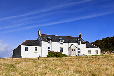 Remote farmhouse, former home of George Orwell where he wrote 'Nineteen Eighty-Four' novel, Barnhill, Isle of Jura, Inner Hebrides, Scotland  -  Konrad Borkowski/ FLPA