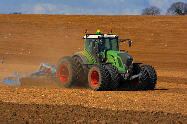 Fendt Vario tractor with double wheels, harrowing arable field prior to sowing, Norfolk, England, April  -  Gary K Smith/ FLPA