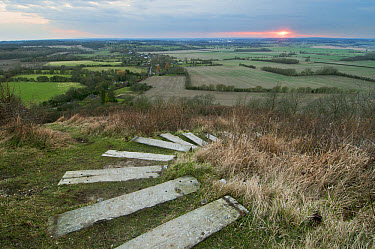 Steps leading from The Devil's Kneading Trough at sunset, looking towards Ashford, Wye Downs, North Downs, Kent, England, March  -  Robert Canis/ FLPA
