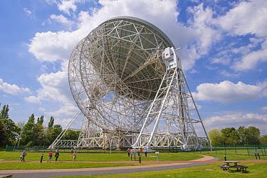Radio telescope, Lovell Telescope, Jodrell Bank Observatory, Cheshire, England, June  -  John Eveson/ FLPA