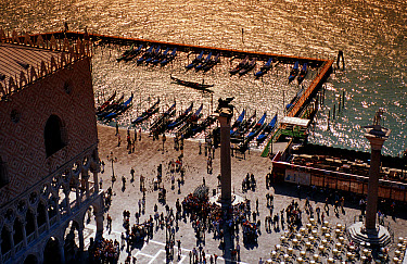 Grande Canale, St. Mark's Square, Venice, Italy  -  OceanPhoto/ FLPA