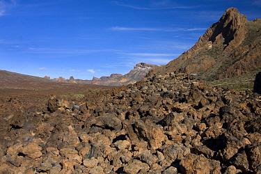 View of volcanic landscape of extinct volcano, Montana Guajara, Mount Teide National Park, Tenerife, Canary Islands, February  -  Angela Hampton/ FLPA