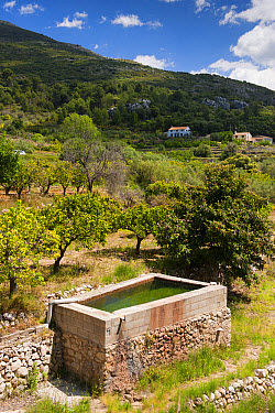 Water storage for almond and citrus orchard, Costa Blanca, Alicante Province, Valencia, Spain, May  -  Wayne Hutchinson/ FLPA