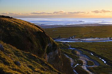 View of saltmarsh habitat and bay at low tide in evening light, Humphrey Head, Morecambe Bay, Cumbria, England, December  -  Dave Pressland/ FLPA
