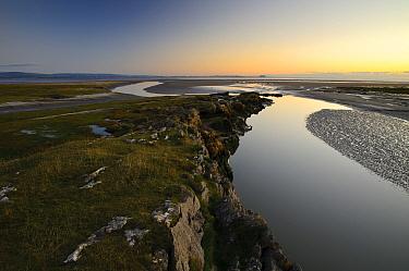 View of spit projecting into bay at dusk, Humphrey Head, Morecambe Bay, Cumbria, England, December  -  Dave Pressland/ FLPA