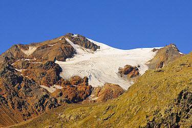 View of alpine glacier, Vederetta de la Mare, Stelvio National Park, Italian Alps, Italy, August  -  Fabio Pupin/ FLPA