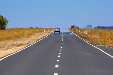 View of road with mirage in heat, South Australia, Australia, February  -  Bernd Rohrschneider/ FLPA