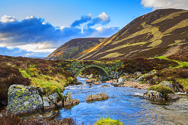View of stone bridge over river in glen, in evening sunlight, Clunie Water, near Braemar, Cairngorms National Park, Aberdeenshire, Highlands, Scotland, May  -  John Eveson/ FLPA