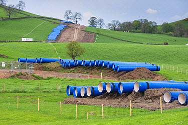 Gas pipeline being laid, to transport gas from Scotland to County Dublin, Ireland, West Linton, Tweeddale, Scottish Borders, Scotland, May  -  John Eveson/ FLPA
