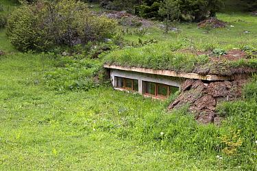Wildlife photographic hide used for viewing bears, near Yagodina Village Bulgaria  -  David Hosking/ FLPA