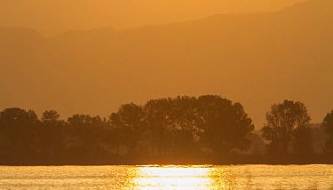 Sunrise over Lake Kerkini, Northern Greece. An important habitat for bird migration  -  David Hosking/ FLPA