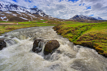 View of fast flowing river with mountains in background, Iceland, June  -  Bill Coster/ FLPA
