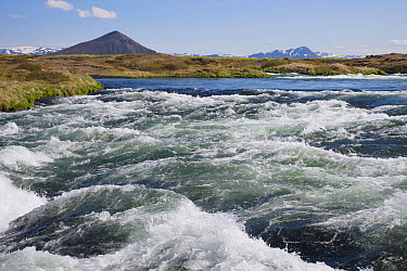 View of river rapids, River Laxa, Myvatn, Iceland, June  -  Bill Coster/ FLPA