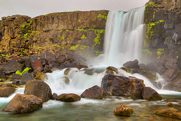 View of waterfall and river, Oxarafoss Waterfall, Oxara River, Thingvellir National Park, Iceland, June  -  Bill Coster/ FLPA