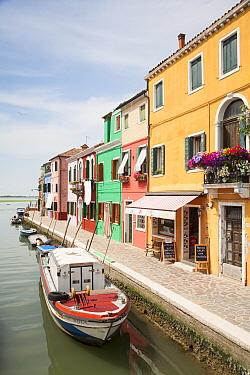 Multi-coloured houses and shops along canal waterfront, Burano Island, Venetian Lagoon, Venice, Veneto, Italy, May  -  Dickie Duckett/ FLPA