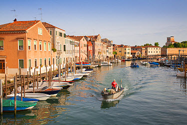 View of canal with fisherman in boat, Canale di San Petro, Castello District, Venice, Veneto, Italy, May  -  Dickie Duckett/ FLPA