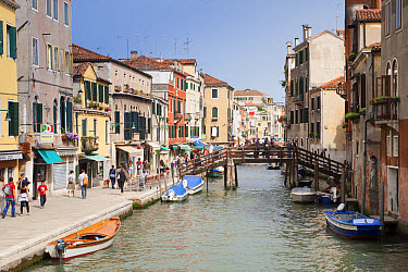 View of canal, footbridge and canalside street, Fondamenta Ormesini, Canareggio District, Venice, Veneto, Italy, May  -  Dickie Duckett/ FLPA