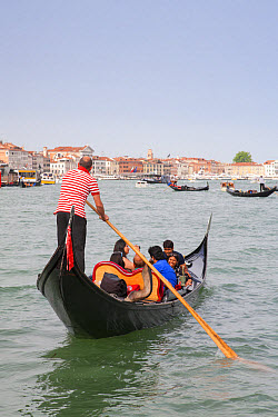 Gondola with tourists on canal, Grand Canal, San Marco District, Venice, Veneto, Italy, May  -  Dickie Duckett/ FLPA