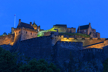 View of castle on volcanic plug illuminated at night, Edinburgh Castle, Edinburgh, Scotland, July  -  Bernd Rohrschneider/ FLPA