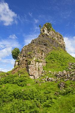 View of rock outcrop 'tower' formation, Castle Ewen, Fairy Glen, Trotternish Peninsula, Isle of Skye, Inner Hebrides, Scotland, July  -  Bernd Rohrschneider/ FLPA