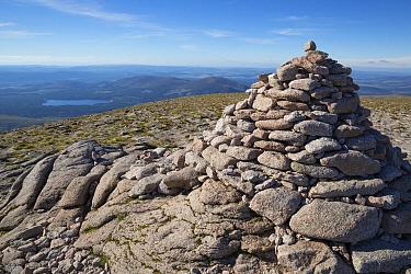 Cairn on mountain summit, Cairn Gorm, Cairngorms National Park, Highlands, Scotland, July  -  Bernd Rohrschneider/ FLPA