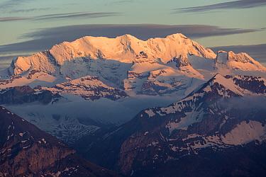 View of snow covered mountain summits at sunset, Swiss Alps, Bernese Oberland, Switzerland, June  -  Bernd Rohrschneider/ FLPA