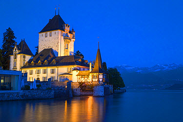 View of lakeside castle illuminated at night, Oberhofen Castle, Lake Thun, Oberhofen, Bernese Oberland, Switzerland, June  -  Bernd Rohrschneider/ FLPA