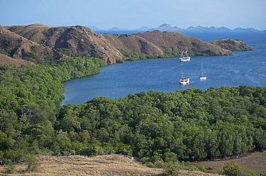 View of bay with liveaboard dive boats, Rinca Island, Komodo National Park, Lesser Sunda Islands, Indonesia, July  -  Colin Marshall/ FLPA