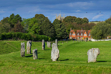 Neolithic henge with stone circle, Avebury Ring, Avebury, Wiltshire, England, October  -  Gary K Smith/ FLPA