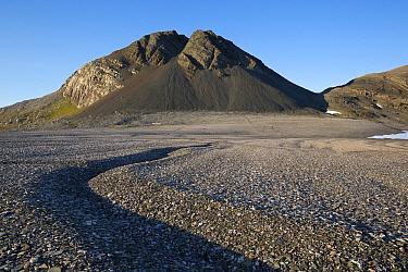 View of mountain with scree, Murchisonfjorden, Gustav V Land, Nordaustlandet, Svalbard, August  -  Bernd Rohrschneider/ FLPA