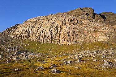 View of tundra and mountain, Murchisonfjorden, Gustav V Land, Nordaustlandet, Svalbard, August  -  Bernd Rohrschneider/ FLPA