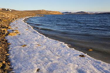 View of frozen beach in fjord, Murchisonfjorden, Gustav V Land, Nordaustlandet, Svalbard, August  -  Bernd Rohrschneider/ FLPA