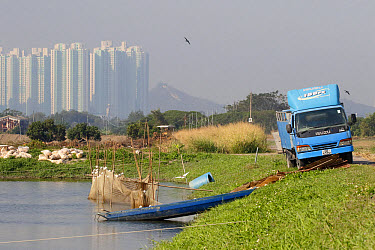 Commercial fishpond with sacks of fish food (bread crusts), boat, net and lorry, with skyscrapers in background, Tai Sang Wai, New Territories, Hong Kong, China, December  -  John Holmes/ FLPA