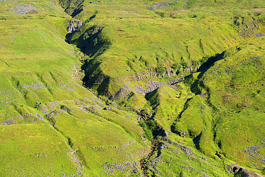 View of old lead mine workings, looking from Buttertubs Pass, Lover Gill, Swaledale, Yorkshire Dales National Park, North Yorkshire, England, June  -  Wayne Hutchinson/ FLPA