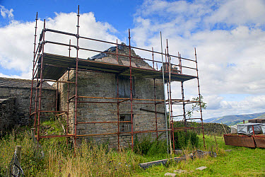 Stone barn with planning permisson to convert to cottage, with scaffolding around, Hawes, Wensleydale, Yorkshire Dales National Park, North Yorkshire, England, August  -  Wayne Hutchinson/ FLPA