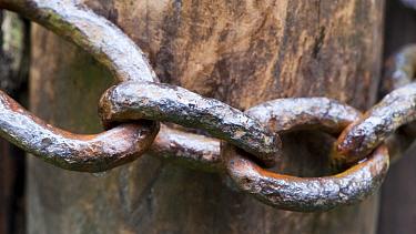 Close-up of old metal chain around gatepost, North Yorkshire, England, July  -  Wayne Hutchinson/ FLPA