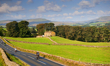 Motorcyclists on rural road speeding and doing wheelie, Hawes, Wensleydale, Yorkshire Dales National Park, North Yorkshire, England, September  -  Wayne Hutchinson/ FLPA