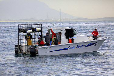 Shark Explorer' shark watching boat with dive cage, Simonstown, Western Cape, South Africa, June  -  Jurgen and Christine Sohns/ FLPA