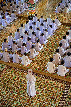 Caodaist disciples sitting during ceremony, Cao Dai temple, Tay Ninh Holy See, Tay Ninh, Tay Ninh Province, Vietnam, December  -  Colin Marshall/ FLPA