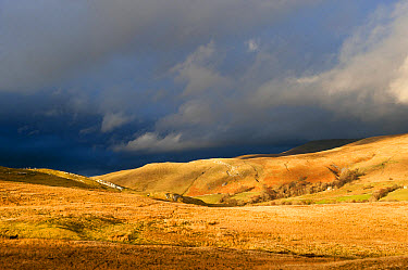 View of fells in evening sunlight, with distant stormclouds, near Kirkby Stephen, Cumbria, England, March  -  Wayne Hutchinson/ FLPA