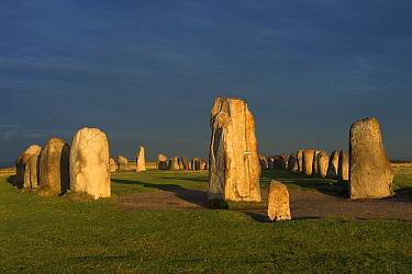Stone ship' megalithic monument at dawn, Ale's Stones, Kaseberga, Skane, Sweden, October  -  Bjorn Ullhagen/ FLPA