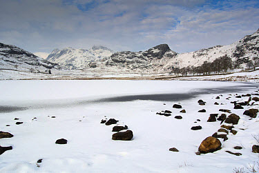 View of frozen lake and snow covered hills, Blea Tarn, looking towards Langdale Pikes, between Great Langdale and Little Langdale, Lake District, Cumbria, England, February  -  Wayne Hutchinson/ FLPA