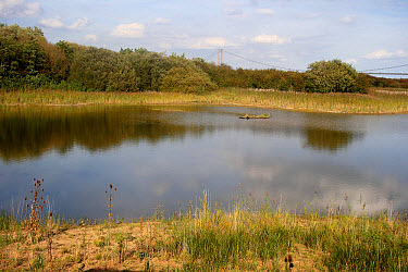 View of flooded former clay pit habitat, Far Ings National Nature Reserve, Barton-upon-Humber, Lincolnshire, England, September  -  Mike Lane/ FLPA