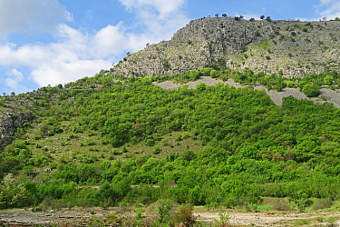 karst scenery at the confluence of Buna and Neretva rivers  Herzegovina, Bosnia and Herzegovina      April
