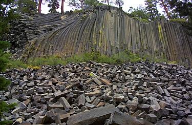 Devils Postpile national monument, eastern-California, USA  -  Adrian Davies/ npl