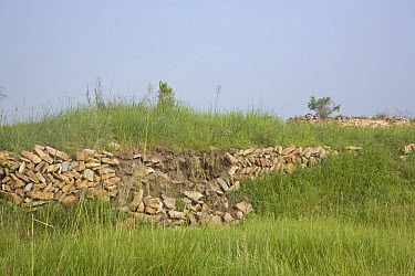 The crumbling remains of walls at Xanadu (also known as ShangDu) where Kublai Khan, leader of the Mongolian empire, had his summer capital Inner Mongolia, northern China July 2006  -  George Chan/ npl